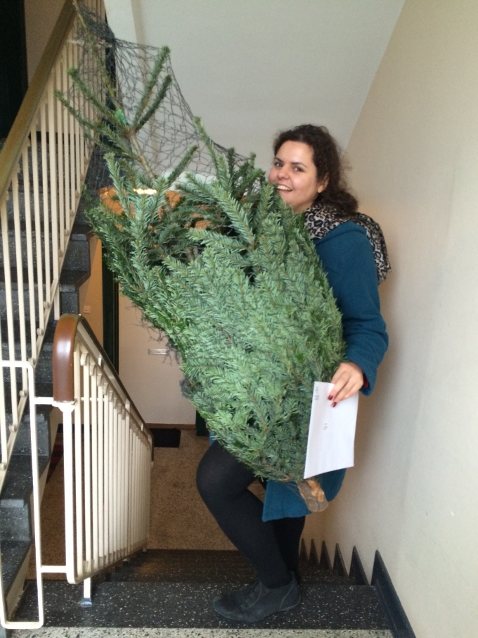 Carrying up the Christmas tree with back pains. Like an adult.