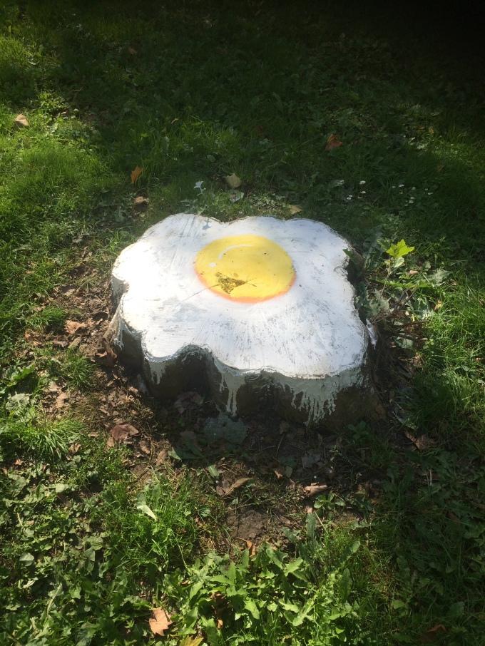 Fried egg on stump.
